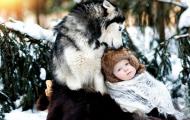 cachorro e criança na neve